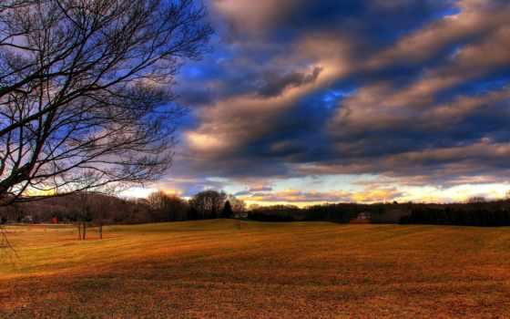 небо, oblaka, пейзажи -, поля, дерево, поле, абстракция, страница, забор, львы,
