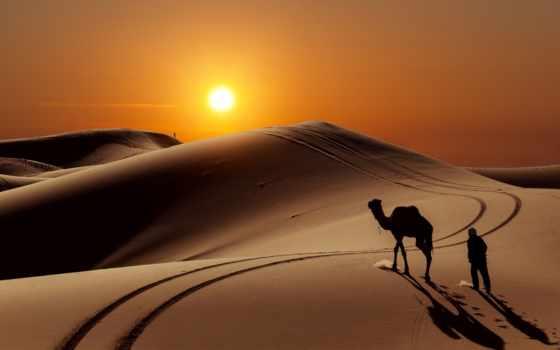 пустыня, morocco, сахара, путешествия, marrakech, fes, день,