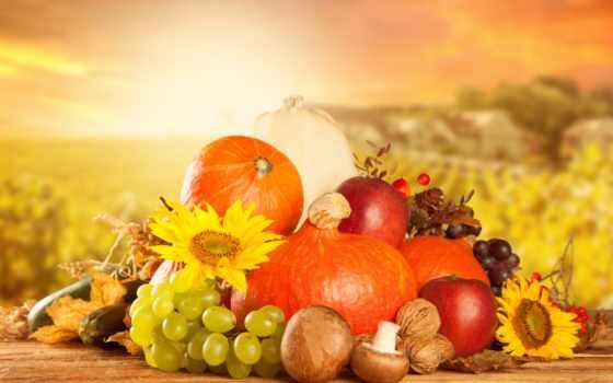 производить, фрукты, тыква, виноград, орехи, apple,