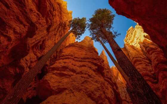 priroda, pine, more, небо, oblako, гора, gora, пейзаж, ozero, park, national