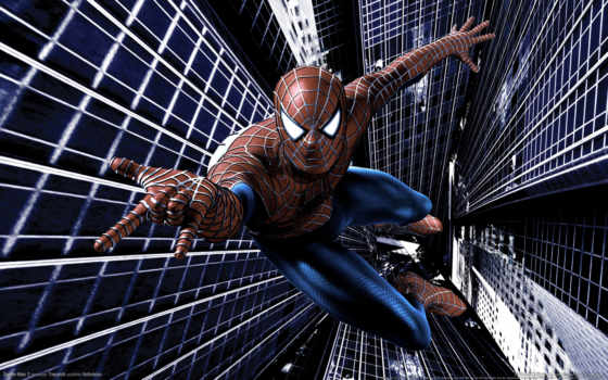 spider, man Фон № 11384 разрешение 1920x1200