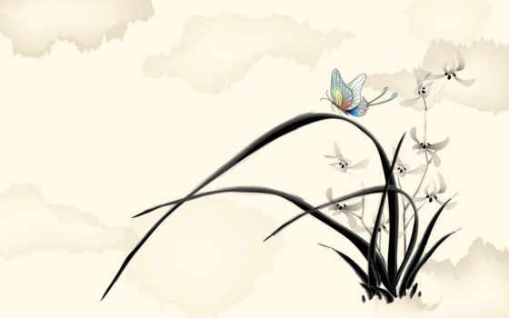 рисованные, бабочка, цветы