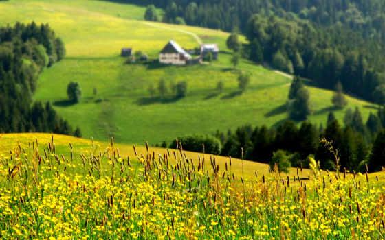 природы, природа, красивая