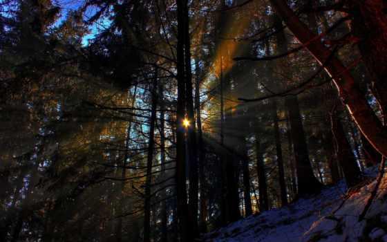 природа, winter, rays, снег, possible, sun, дек, trees, горы, установить,