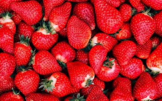 клубника, dartmouth, ягода, растение, плод, еда, scotia, nova
