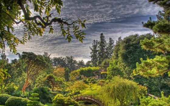 сады, природа, marino