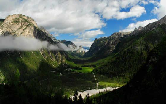 горы, лес