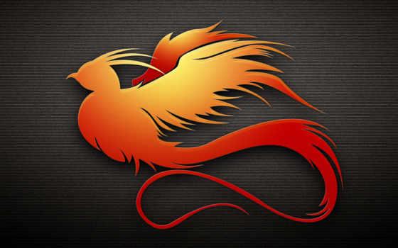 dark, птица, оранжевый
