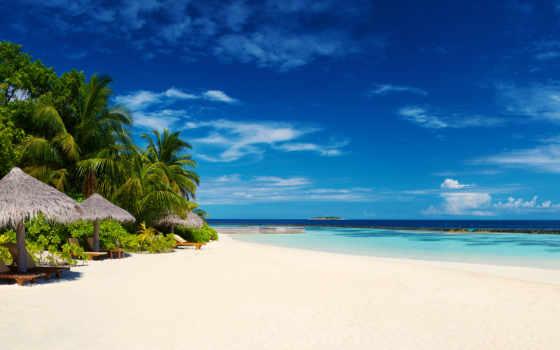 ,, океан, пальмы, пляж, небо, тропическая зона, синий, природа, пляж, море, океан, Карибский, берег,