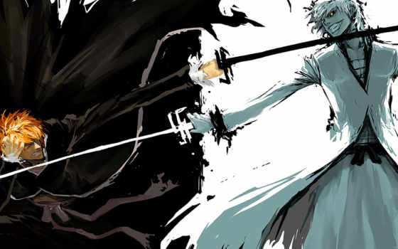 bleach, anime