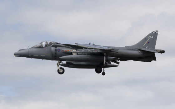 harrier, pictures, day, screensavers, every, new, photos, only,