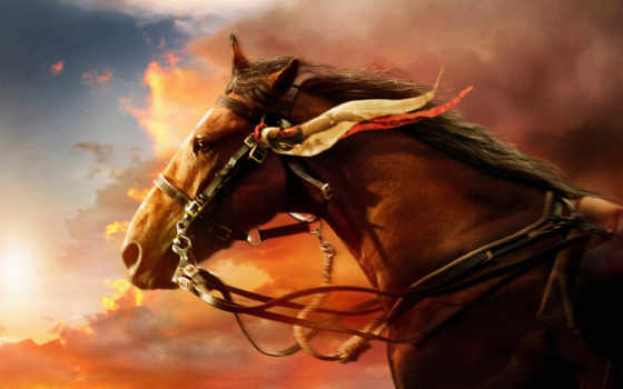 лошади, картинка, лошадь, семейного, zhivotnye, просмотра, fantasy,