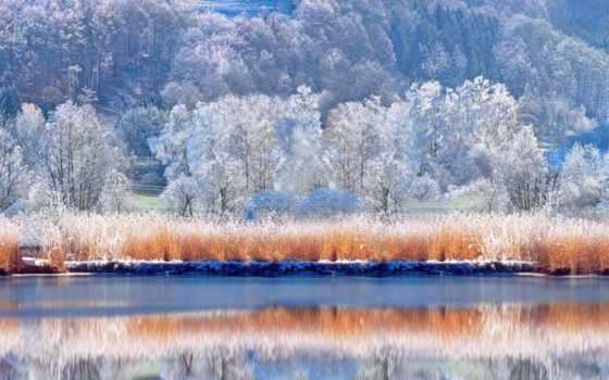 winter, scenic, снег, free, earth, природа,