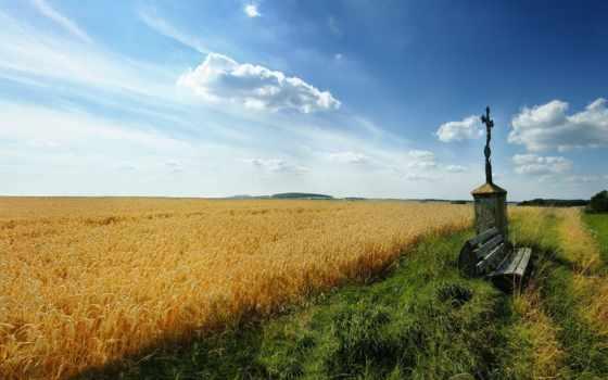 христианские, трава, поле, небо, пшеница, широкоформатные, телефон, бесплатные, природа, компьютер, горы,