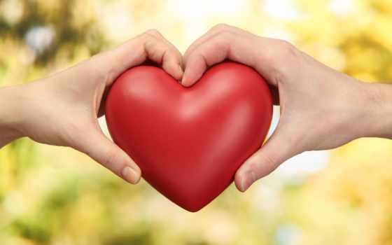love, сердце, free, hindi, shayari, red, грустный, экспертов,
