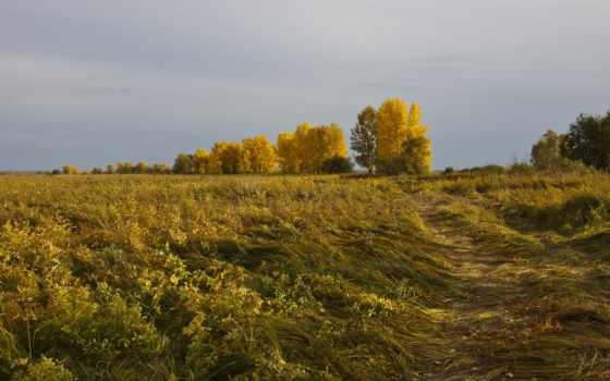 осень, горизонт, природа, монитора, горы, озеро, дек, полях, природы,