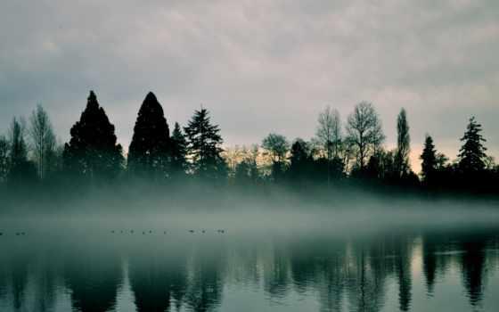 туман, утро, река, лес, дымка, рассвет, раннее, природа, trees, sun, небо,
