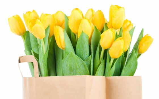 тюльпаны, желтые, букет