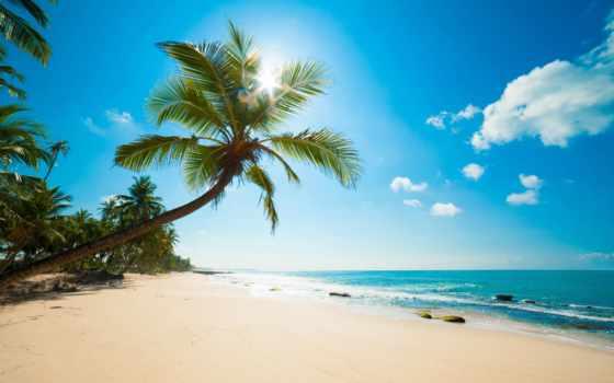пляж, день, rub, оплата, россия, москва, доставка, производственный, заказать, стена, фотообои