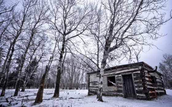 лесу, house, старый, дома, строения, изьба, банка, winter, lodge, лес,