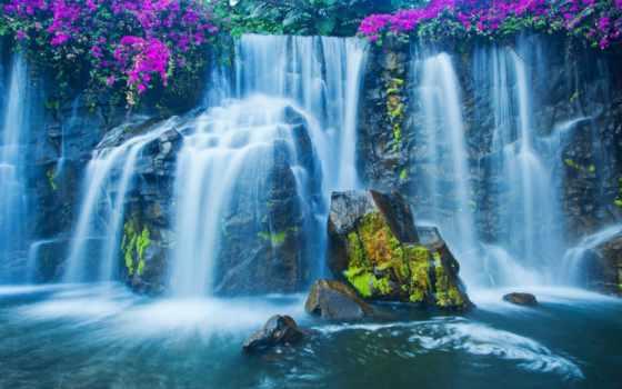 водопад, мох, камни, cvety,
