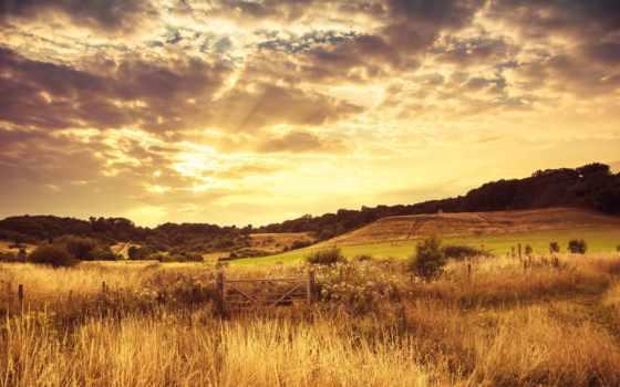 природа, favourite, margin, закат, літо, landscape, поле, пейзажи -, холмы, вечер, getbg,
