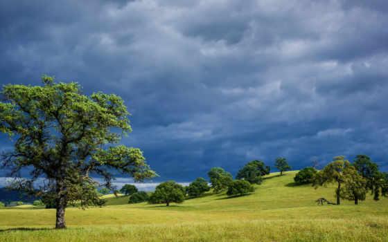 trees, природа, холмы, небо, summer, пасмурно, синее, весна, трава, сша,
