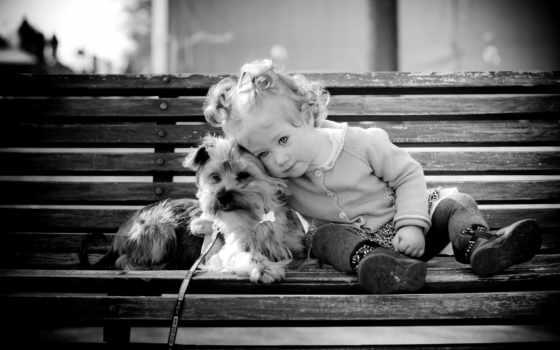 девушка, собачкой, сидят, скамейке, children, andre, белые, чёрно, собаки, девочки,