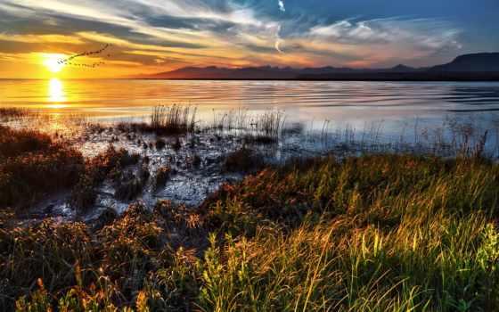 рассвет, landscape, природа, трава, утки, летят, утро, water,