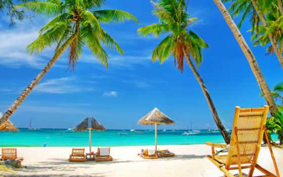 море, пляж, palm, песок, отдых