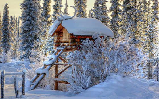 аляска, wilderness, alaskan, кабина, дек, lodge, широкоформатные,