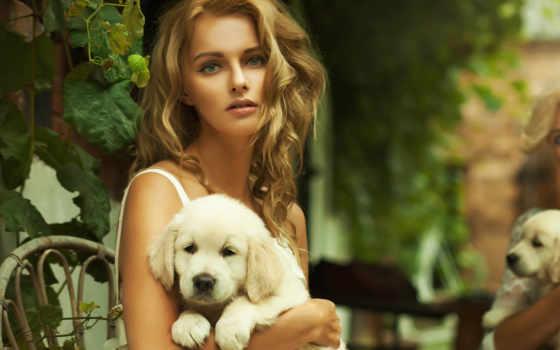 девушка, devushki, красивые, красивая, щенок, ретривера, zhivotnye, животными, золотистый, собаки, руках,