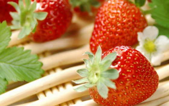 еда, клубника, ягода, макро, клубнички, напитки, витамины, фрукты,