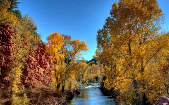 осень, природа, река, лесу, осеннем, листва, осени, trees,