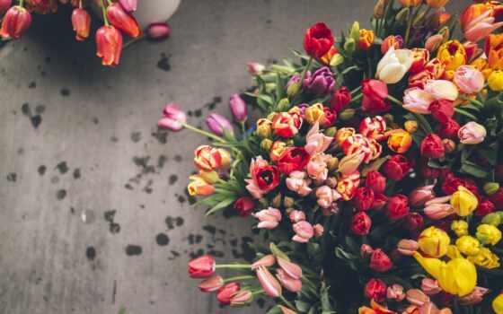 тюльпаны, цветы, букет