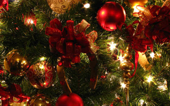 год, new, дерево Фон № 52982 разрешение 1920x1200