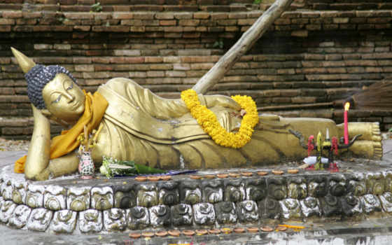 buddha, high, images,