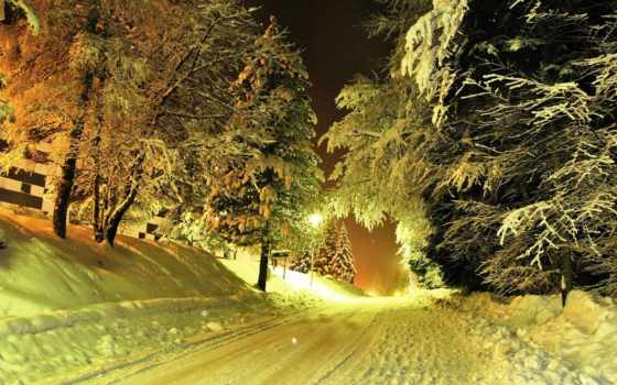 winter, дорога, снег, ночь, trees, фонари, зимняя, широкоформатные,