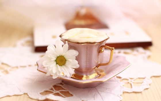cvety, утро, coffee, cup, завтрак, натюрморт, букет,