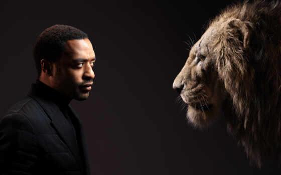 lion, king, subscribe, мужчина, коллекция, share