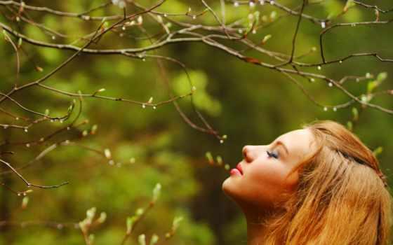 фотосессии, идеи, весенней, весна, лесу,
