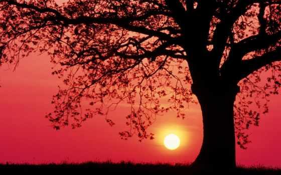 soleil, coucher, закат, природа, rouge, ecran, ciel, randathani, youtube,