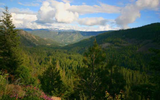 деревья, горы, облака, смотрите, завантажити, desktop, nature, forest, hinh, nen, valles, fondo, sfondo, download, другие,