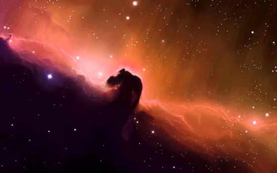 космос, звезды Фон № 24149 разрешение 1920x1200