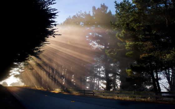 promienie, słońca, утро
