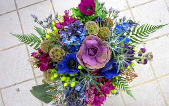 цветы, дек, mac