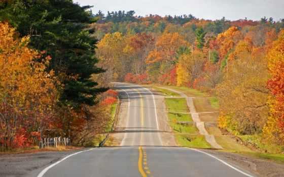 дорога, осень, деревне, youtube, дороги, лес, ах,