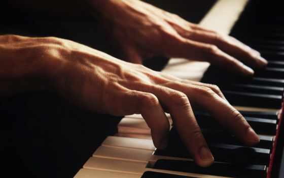 рука, мужчина, finger, можно, рассказать, того