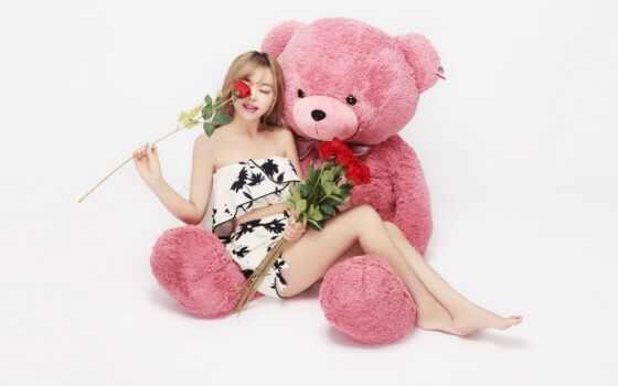 цветы, девушка, хороший, идея, роза, медведь, romantic