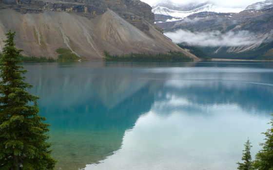 альберта, banff, national, louise, озеро, park, природа, pin,